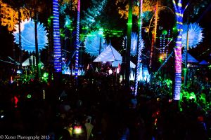 The Fractal Forest TM. Courtesy of Xavier Walker Photography