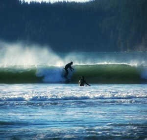 pic-surfing