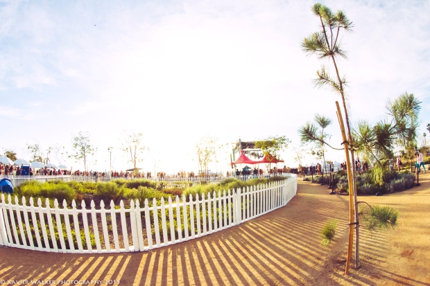 Tree Scenery-1
