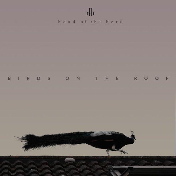 birdsroof