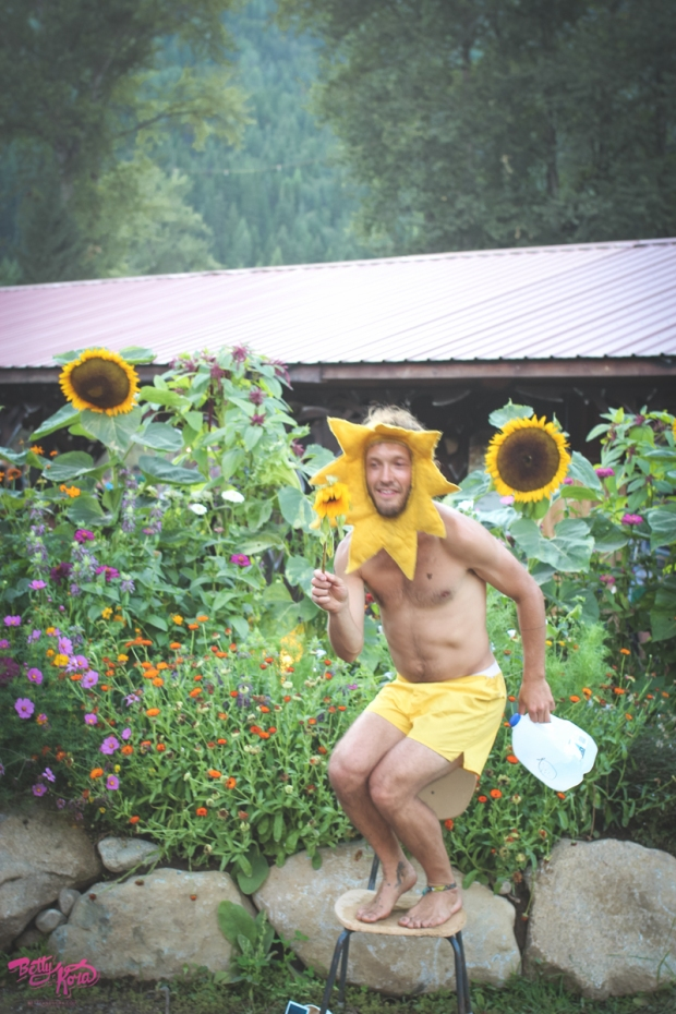 sunflowerguyshambs2015