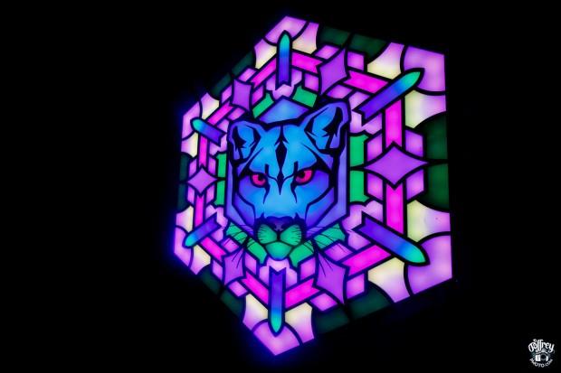 wtf lion